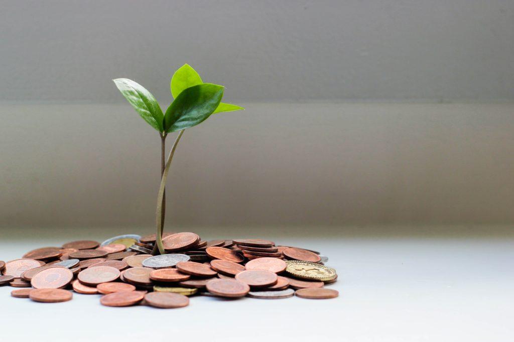 小銭に生えている小枝